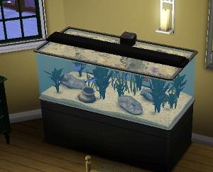 Thenumberswoman's modern petsn fish tank.